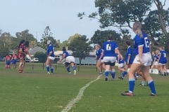 Waratah Mayfield vs North Newcastle
